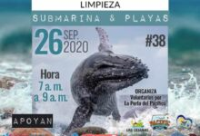 Photo of Aware Week Tumaco · Limpieza Submarina y playas #38